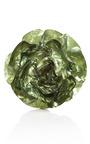 Armani Large Flower Pin by CAROLE TANENBAUM for Preorder on Moda Operandi