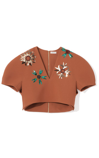 Medium delpozo red embellished cropped top