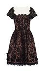 Scalloped Lace Dress by OSCAR DE LA RENTA Now Available on Moda Operandi