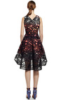 Lace Eclipse Dress by PETER PILOTTO for Preorder on Moda Operandi