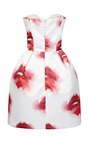 Strapless Printed Duchess Satin Dress by MSGM for Preorder on Moda Operandi