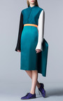Reiley Skirt by ROKSANDA for Preorder on Moda Operandi