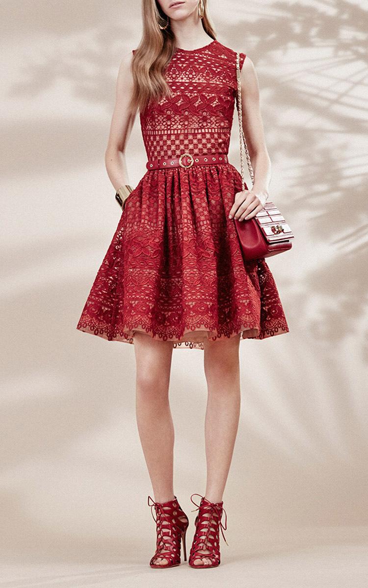 Guipure Lace Sleeveless Dress by Elie Saab   Moda Operandi