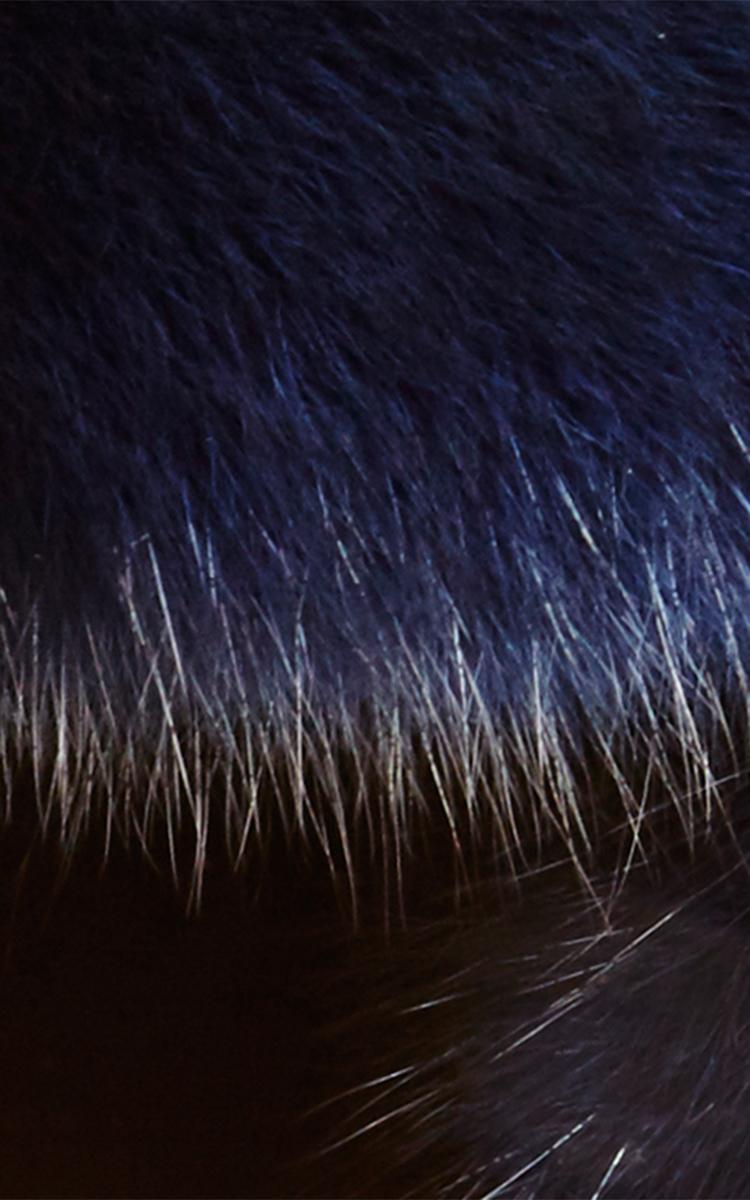 5c865bf0e Navy Sable Fur Trapper Hat