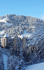 Love Suite Experience At The Alpina Gstaad Hotel by KIKI DE MONTPARNASSE Now Available on Moda Operandi