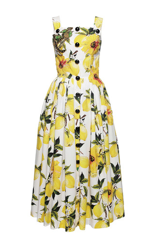 Medium dolce gabbana print needlepoint lemon print poplin dress