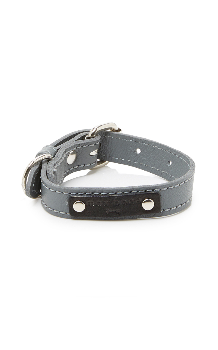 Dog Collar Zimbabwe