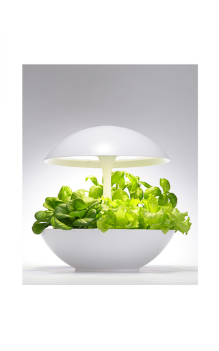 Medium akarina white hydroponic led growlight 2
