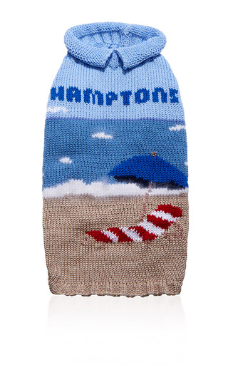 Medium travels with tiger blue hamptons dog sweater