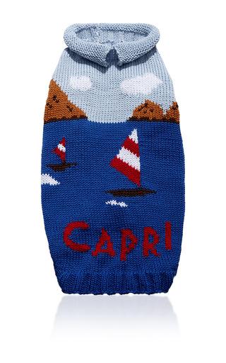 Medium travels with tiger blue capri dog sweater
