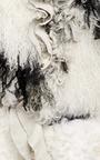 Black Shearling And Chiffon Jacket by RODARTE for Preorder on Moda Operandi