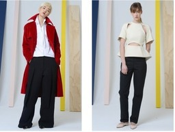 Rosie Assoulin Fall/Winter 2014 on ModaOperandi