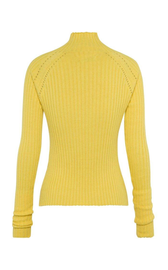 Blake Ribbed Cotton Turtleneck Sweater
