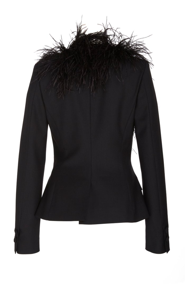 SpecialOrder-Double Breasted Jacket With Feathers-GR