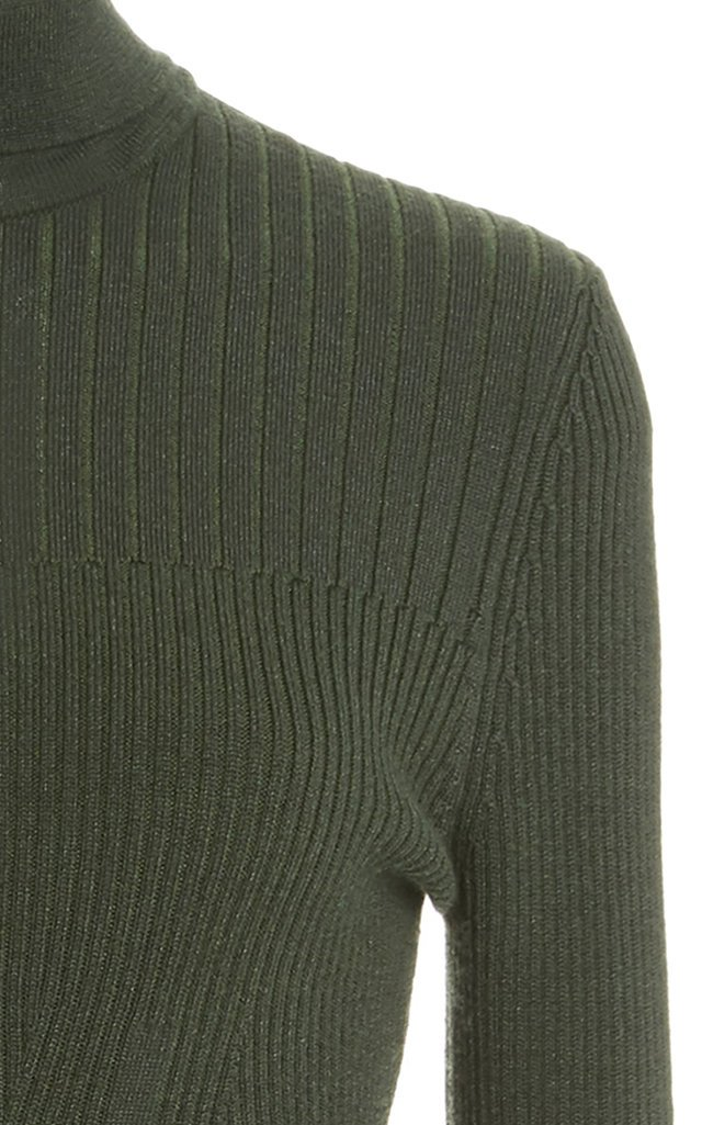 Plaited Ribbed Knit Turtleneck