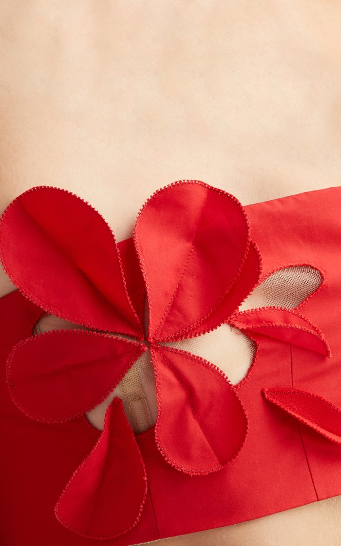 Strapless Floral Laser-Cut Cotton-Blend Crop Top