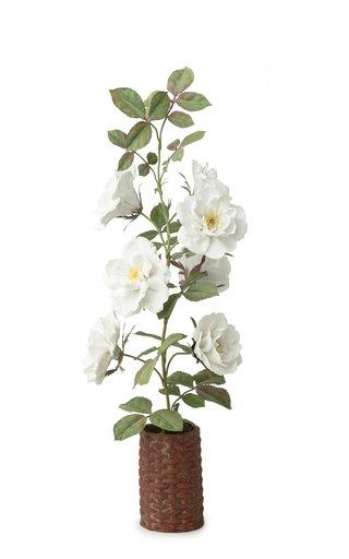 Garden Rose Porcelain Sculpture