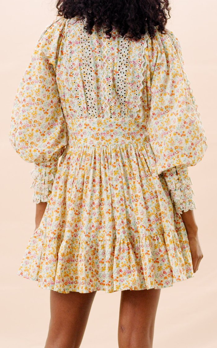 Broderie-Trimmed Cotton Mini Dress
