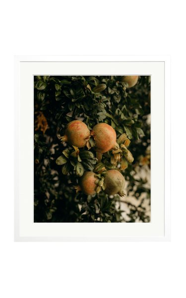 Large Pomegranate in Crete Framed Photography Print